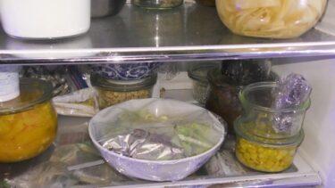 作り置きして一週間で腐るのは日持ちの悪い食材とやり方に問題!